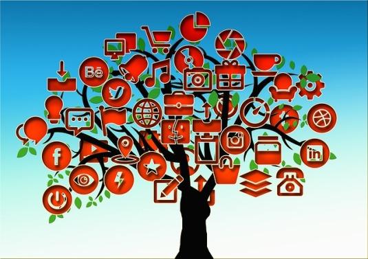 tree-710658_640